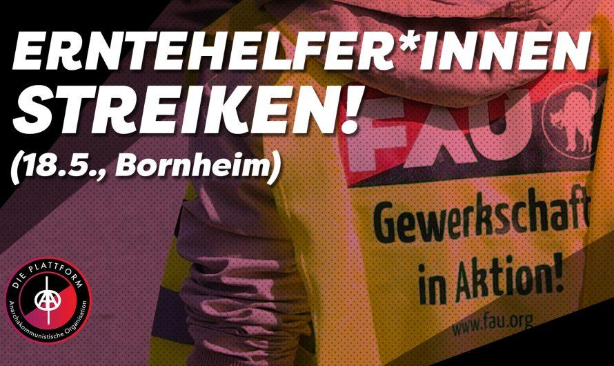 Wilder Streik von Erntehelfer*innen in Bornheim | Video von Die Plattform Ruhr