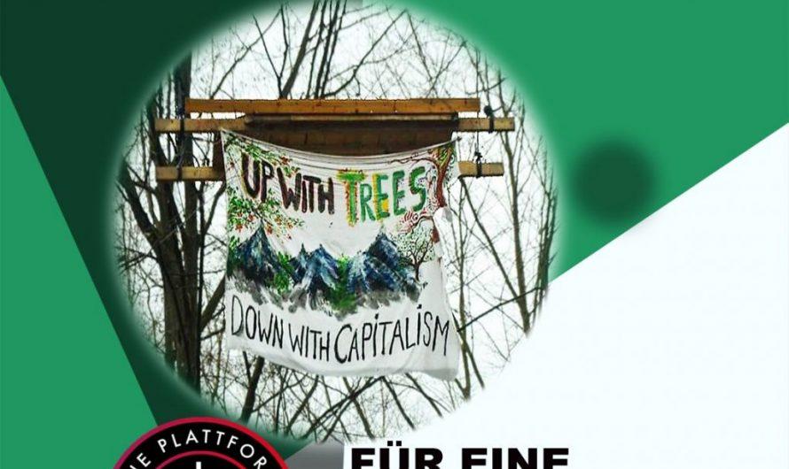 Solidarität mit der Besetzung im Dannenröder Forst! Für eine Verkehrswende von unten!